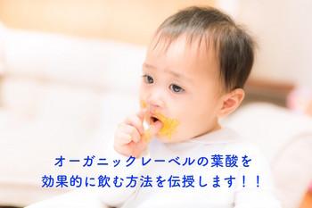 オーガニックレーベルの葉酸飲み方.jpg